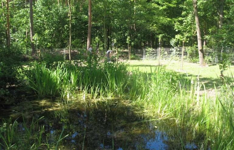 Schulgarten AG - slide 1