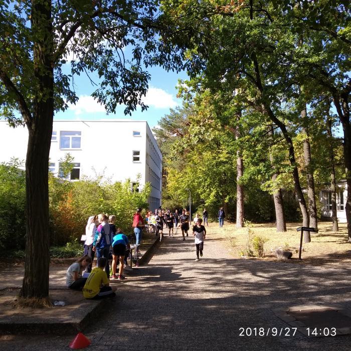 Lauf, Wald, Lauf! - slide 3