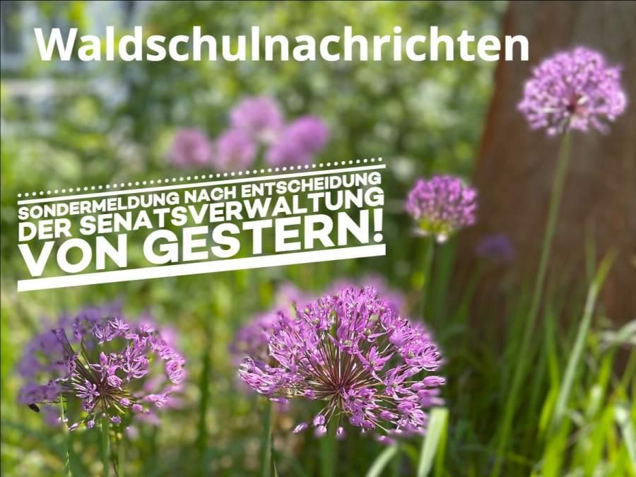 Neuigkeiten: Volle Klassen ab 09. Juni   Schließfächer   Abi-Entlassung